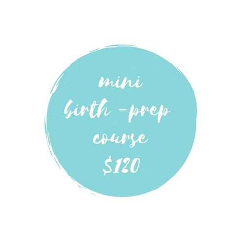 mini birth prep $120